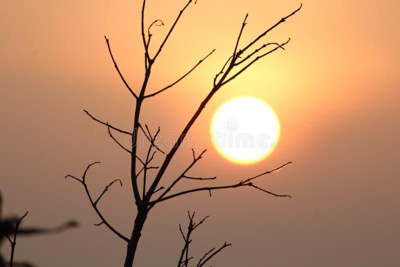 Subida de Sun fotografía de archivo libre de regalías
