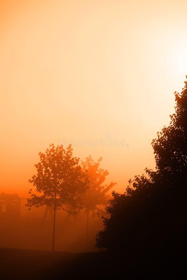 Subida de Sun de la niebla foto de archivo