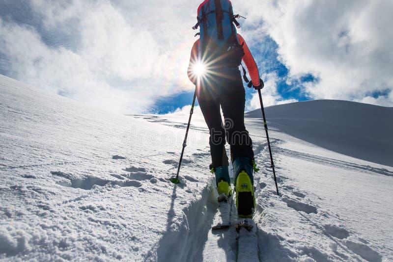 Subida del montañés de la muchacha en los esquís y las pieles de foca fotos de archivo libres de regalías