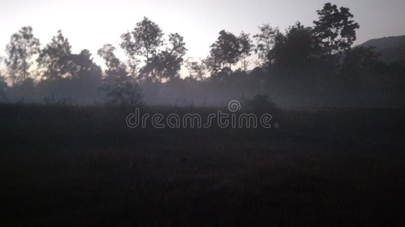 Subida del sol de la mañana foto de archivo