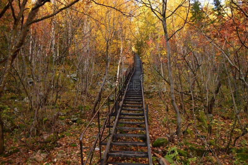 Subiendo las escaleras 400 pasos fotos de archivo