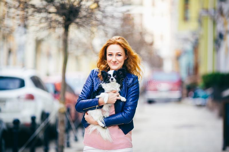 Subject man and dog. young red-haired Caucasian woman with freckles on face holds black and white shaggy chihuahua breed dog. The royalty free stock photo