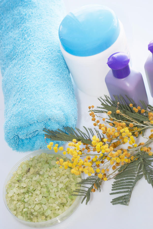 Download Subjects for hygiene stock image. Image of towels, shampoo - 13462035