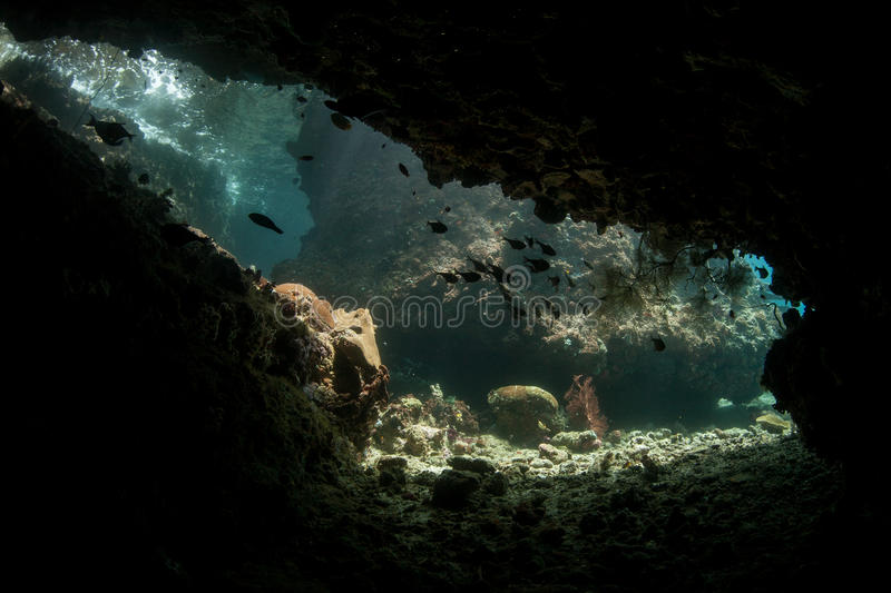 Submerged Cave and Coral Reef. A submerged cave looks out on a reef in Raja Ampat, Indonesia. This remote area is part of the Coral Triangle and is known for its royalty free stock photos