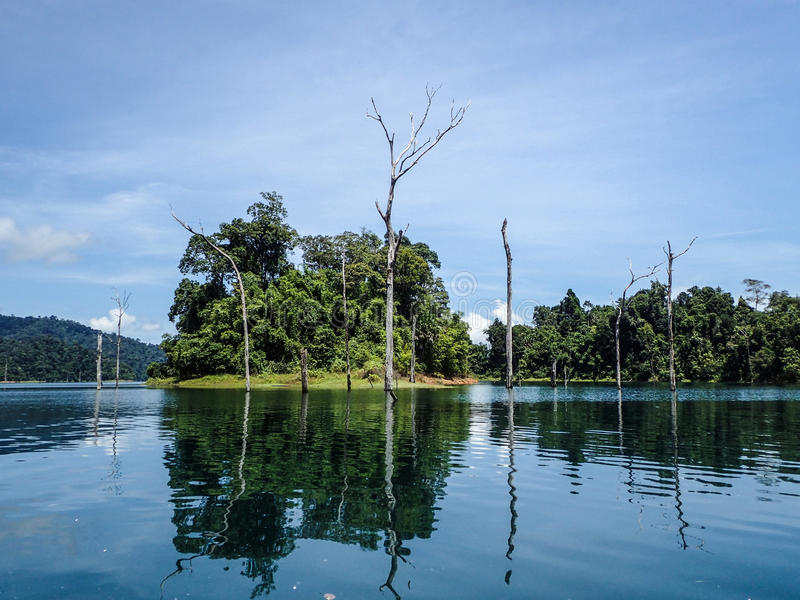 Submerged dead forest and island at Khao Sok. Tropical lake, Krabi province, Thailand stock photo