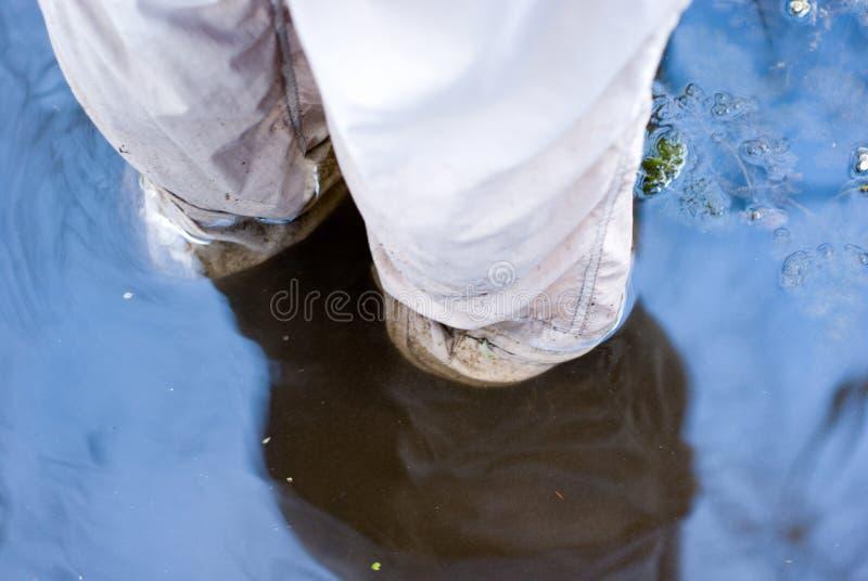 Download Submerged Feet Royalty Free Stock Photos - Image: 4586628