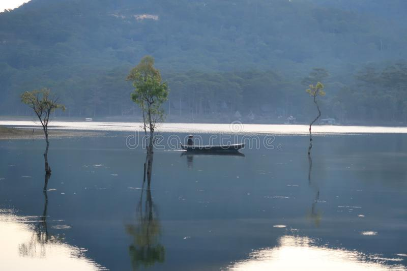 Flooded forest reflection on the lake with boatman in magic light part 51. Submerged trees with green fresh leaves reflecting on the lake and the boatman at stock photos