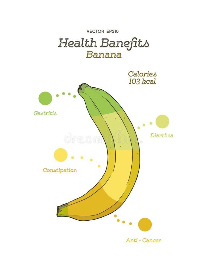Subsidios por enfermedad del plátano, vector del drenaje de la mano stock de ilustración