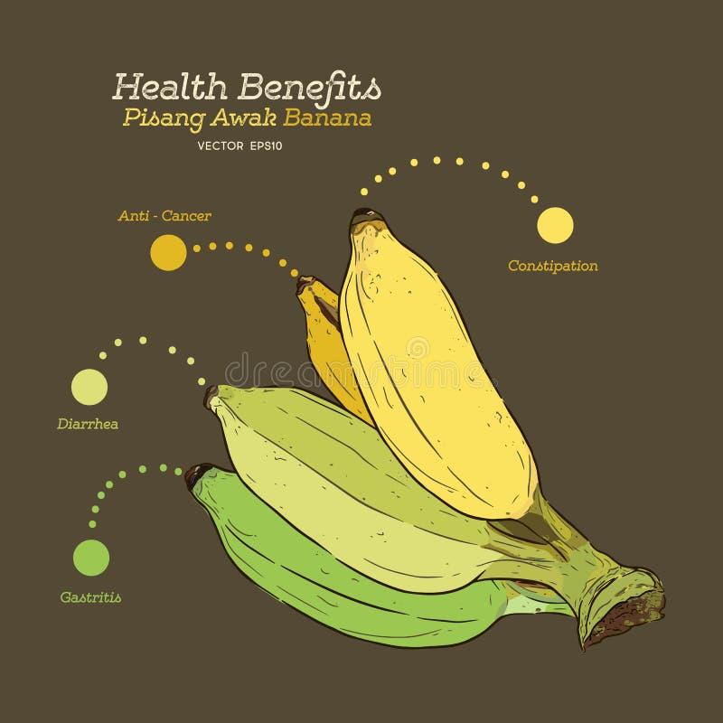 Subsidios por enfermedad del plátano, vector del drenaje de la mano libre illustration