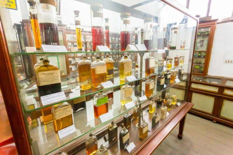 Substancji chemicznych butelki w Szklanym gabinecie zdjęcie stock
