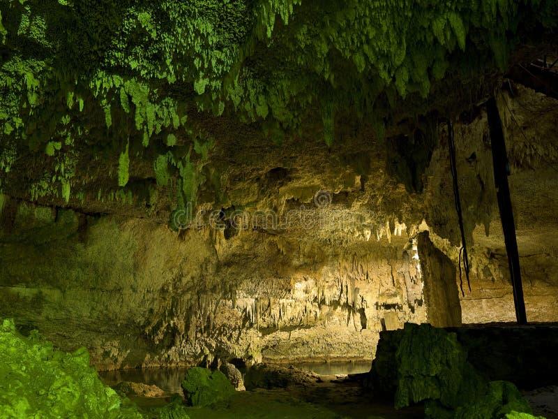 Subterranean cenote in Mexico. Subterranean cenote in Yucatan Mexico stock image