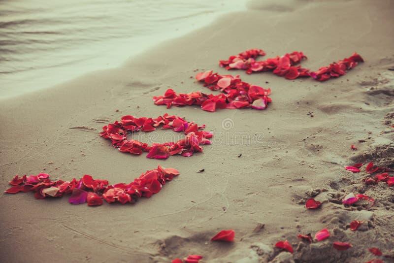 Subtitule o amor da palavra na areia do mar. Ame a inscrição das pétalas das rosas. foto de stock