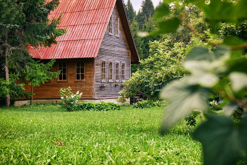 Sububrban trähus med ett rött tak i den gröna trädgården på ryssbygd i sommar arkivfoto