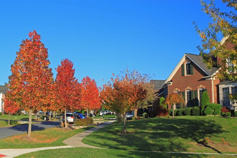 Autumn Residential Area. Suburb Autumn Residential Area with colorful trees, green lawn and luxurious house royalty free stock image