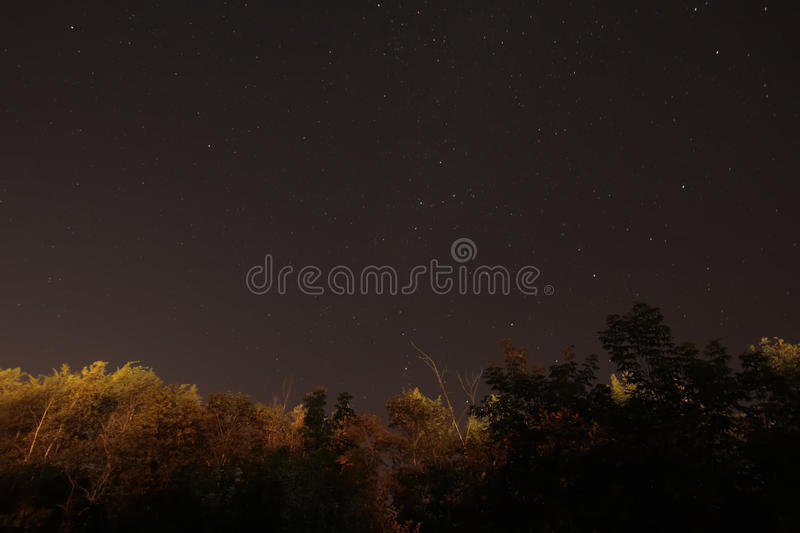 Download Suburban Starfield stock image. Image of glow, night - 32907883