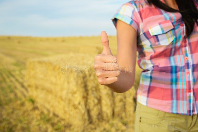 Succes in landbouw bedrijfsconcept royalty-vrije stock afbeeldingen