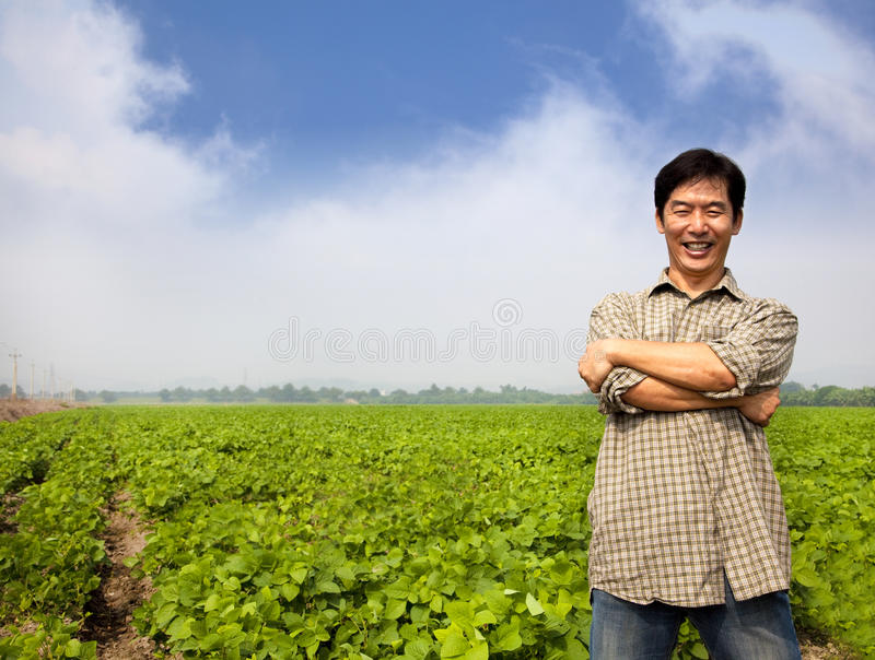 Successful Asian  Farmer Stock Photo
