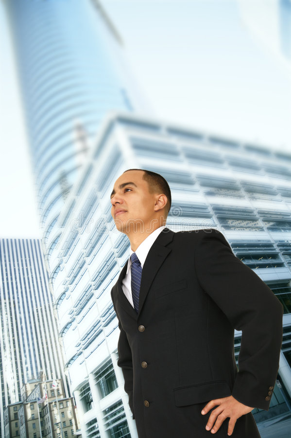 Download Successful Business Owner stock image. Image of coworker - 4587929