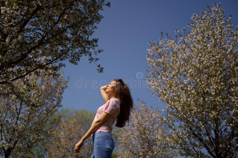 Successful business woman enjoys her leisure free time in a park with blossoming sakura cherry trees wearing jeans, pink royalty free stock photo