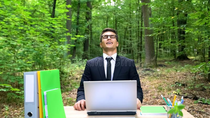 Successful businessman enjoying work in park, good air conditioning in office royalty free stock images