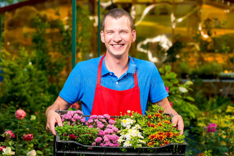 Successful businesswoman holding in her hands seedling flowers stock photo