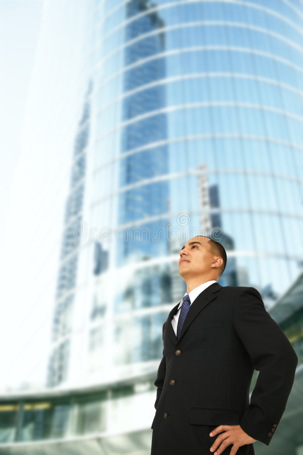 Download Successful CEO stock image. Image of person, coworker - 4531923