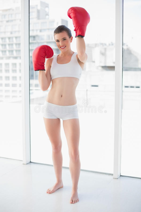 Successful fit brown haired model in sportswear wearing red boxing gloves royalty free stock photos
