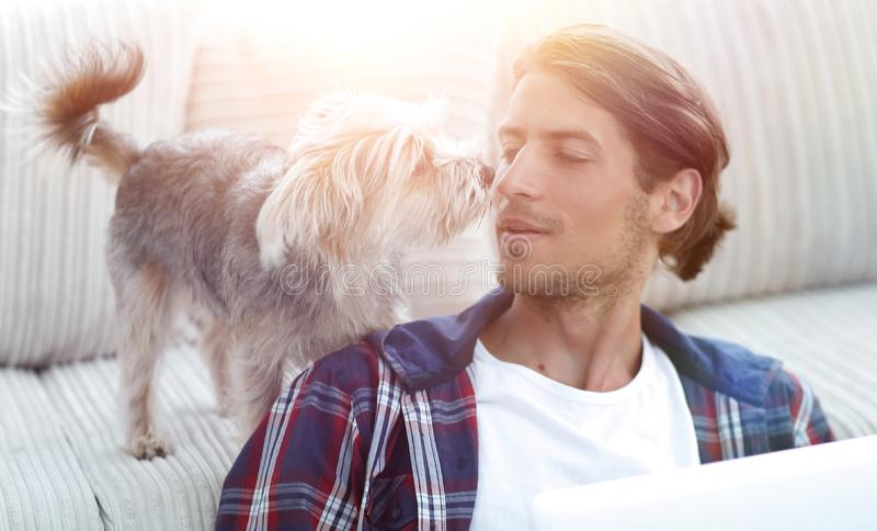Successful guy and his favorite pet in a cozy living room. royalty free stock photos