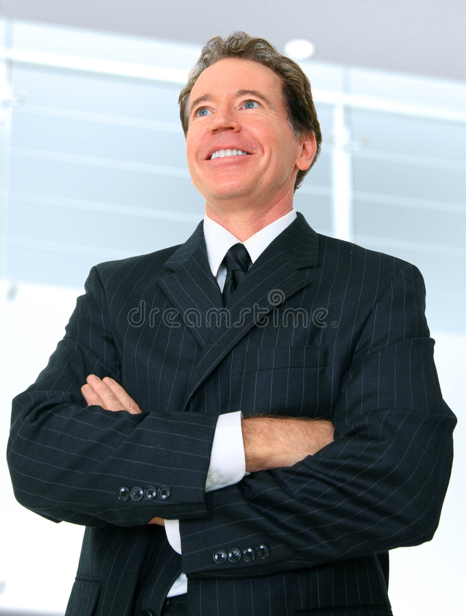 Download Successful Senior Businessman Stock Photo - Image: 7273114