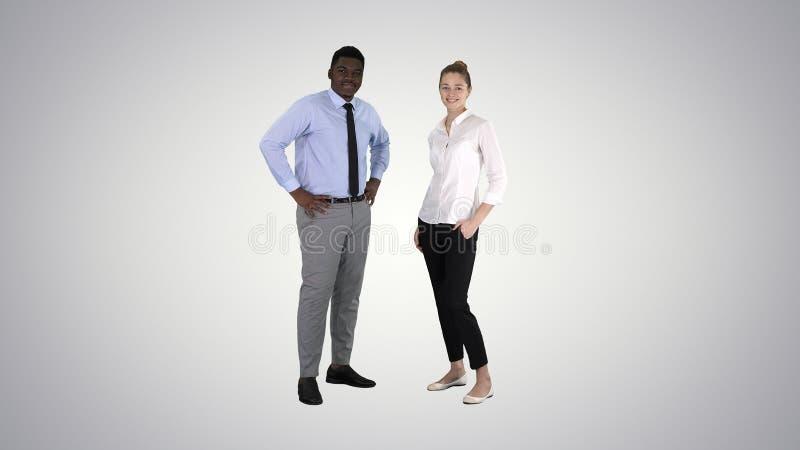 Succesvol zakenlui, het commerciële team stellen op gradiëntachtergrond royalty-vrije stock foto