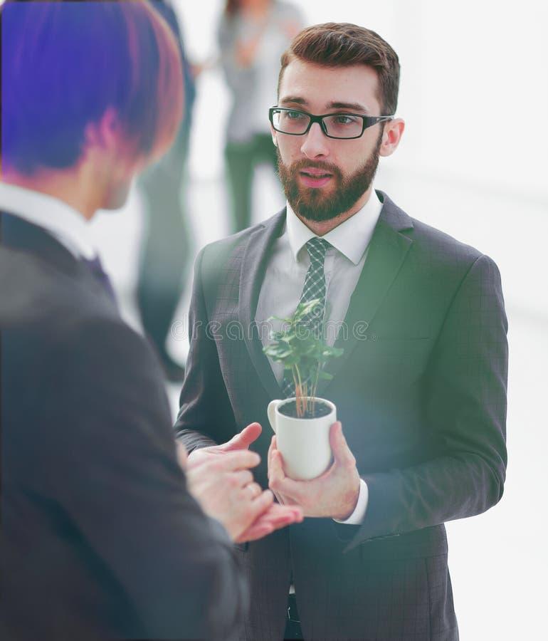 Succesvolle jonge zakenman met jonge spruit stock foto