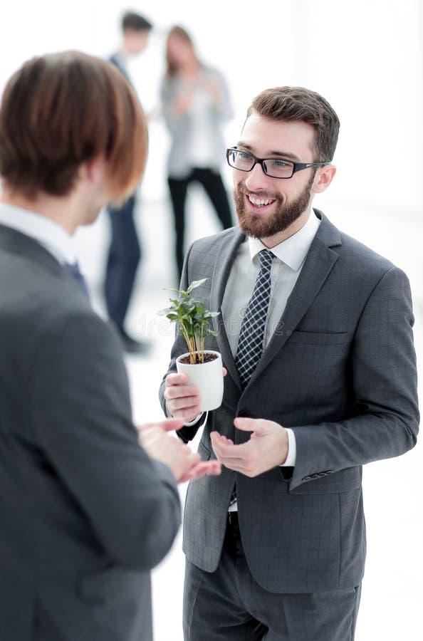 Succesvolle jonge zakenman met jonge spruit stock foto's
