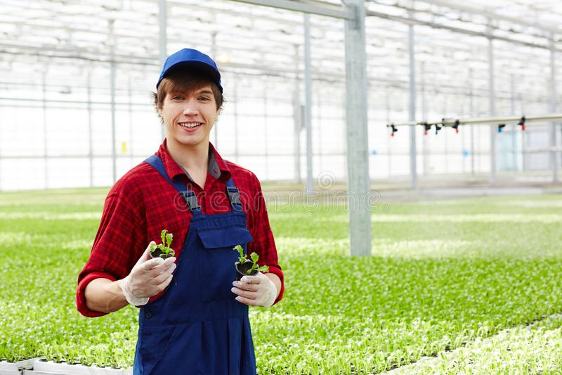 Succesvolle landbouwer stock foto