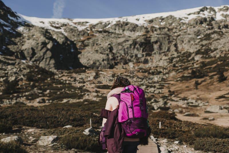 succesvolle wandelaarvrouw die van de mening over bergpiek genieten Gelukkige backpacker in aard royalty-vrije stock foto's