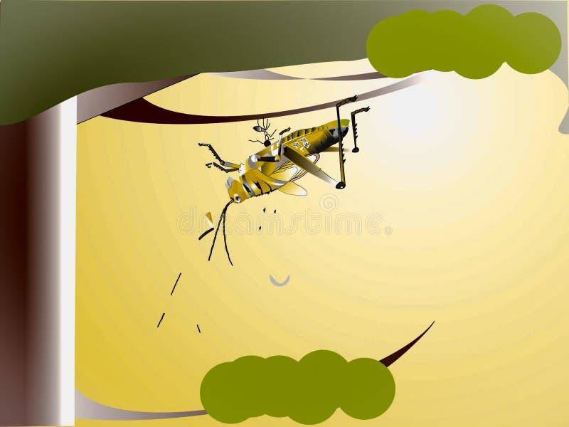 Succinta de fourmi et de Patanga photos libres de droits