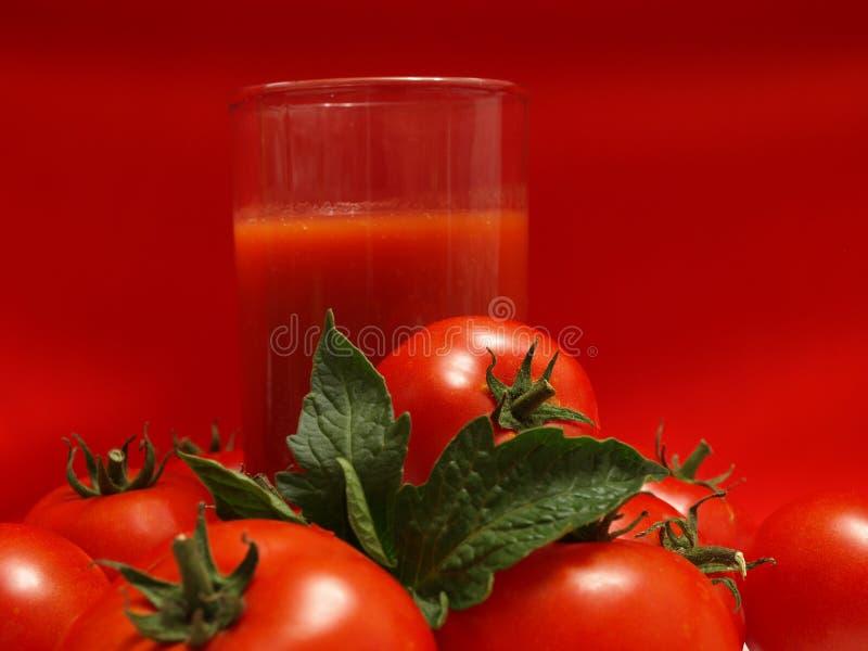 Succo di pomodoro fotografie stock libere da diritti