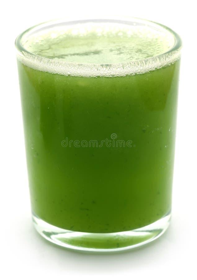 Succo fresco del cetriolo verde fotografia stock