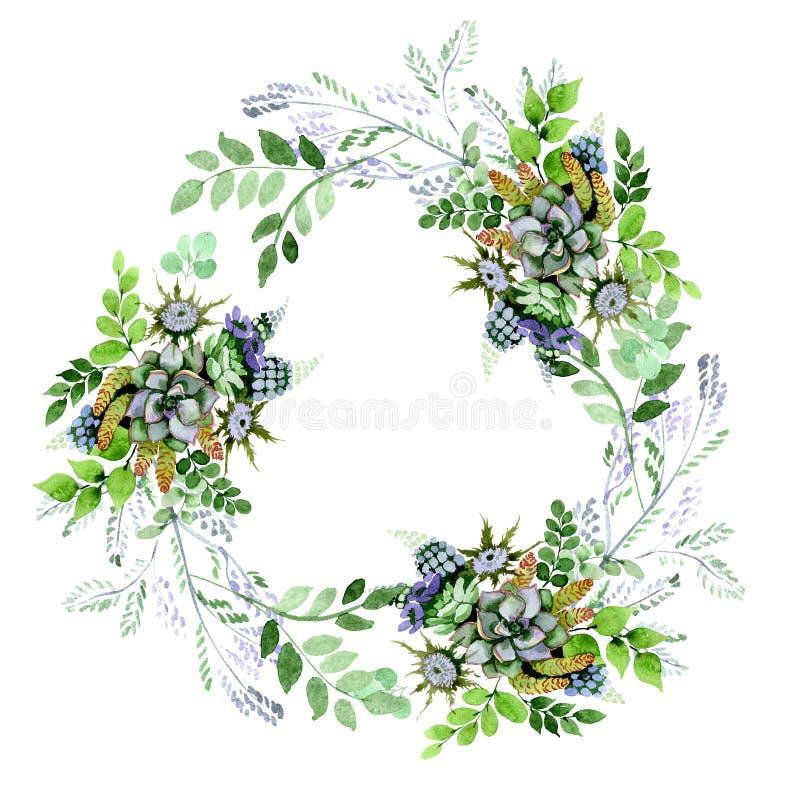 Succulent bouquet floral botanical flowers. Watercolor background illustration set. Frame border ornament square. Succulent bouquet floral botanical flowers stock illustration