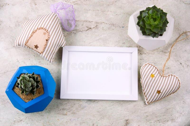 succulent in concrete pot en wit houten kader royalty-vrije stock fotografie