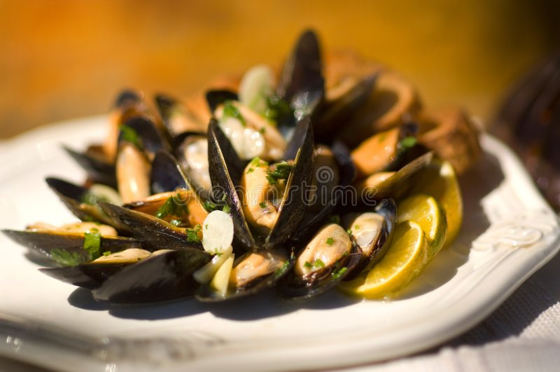 Succulent fresh mussells royalty free stock image