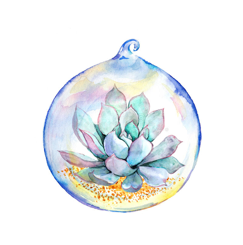 Succulent in glass ball. Watercolor. Succulent plant in glass ball. Watercolor painting stock illustration