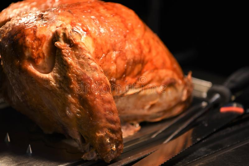 Succulent golden whole roast turkey joint of meat resting and ready to carve with knife and fork to the side stock photo