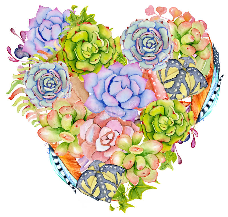 Free Succulent Plants, Cactus And Feather In The Shape Of A Heart. Royalty Free Stock Photography - 81165767