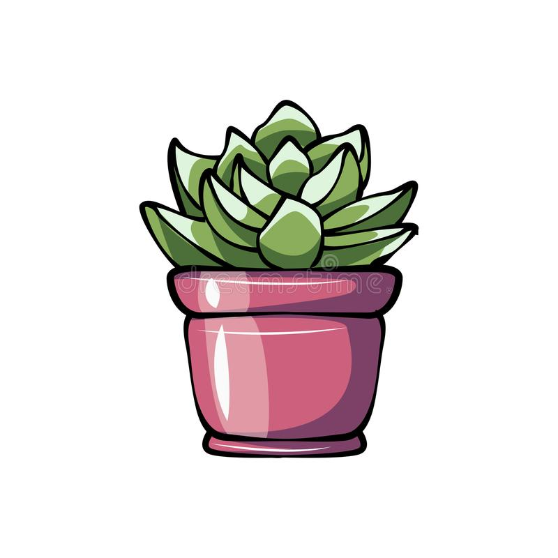Succulent potted plant flat color icon for apps and websites. Vector stock illustration