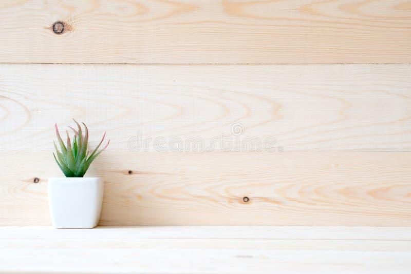 Succulente installatie in een kleine pot gezet op lijst royalty-vrije stock foto