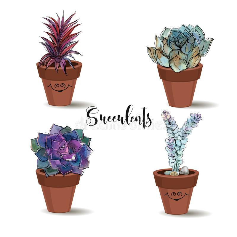 Succulenti in vasi di argilla insieme Grafici con l'acquerello Vettore illustrazione vettoriale