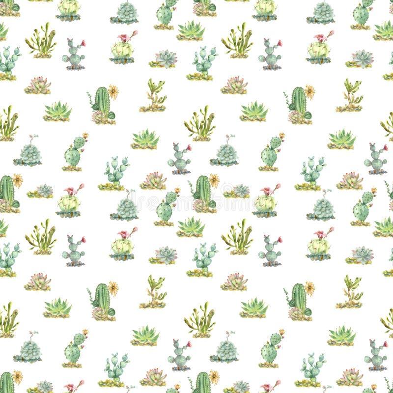 Succulents в акварели иллюстрация вектора