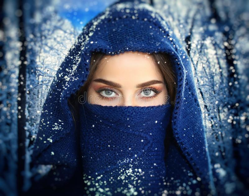 Snow Blue Eyes Angel stock photography