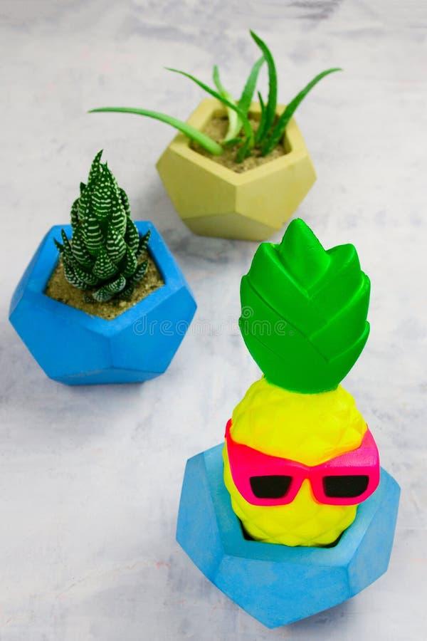 Succulents en conserva en potes concretos y piña divertida imagen de archivo
