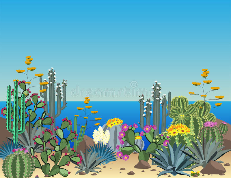 Succulents et fond mignons de vecteur de cactus Usines de littoral illustration libre de droits